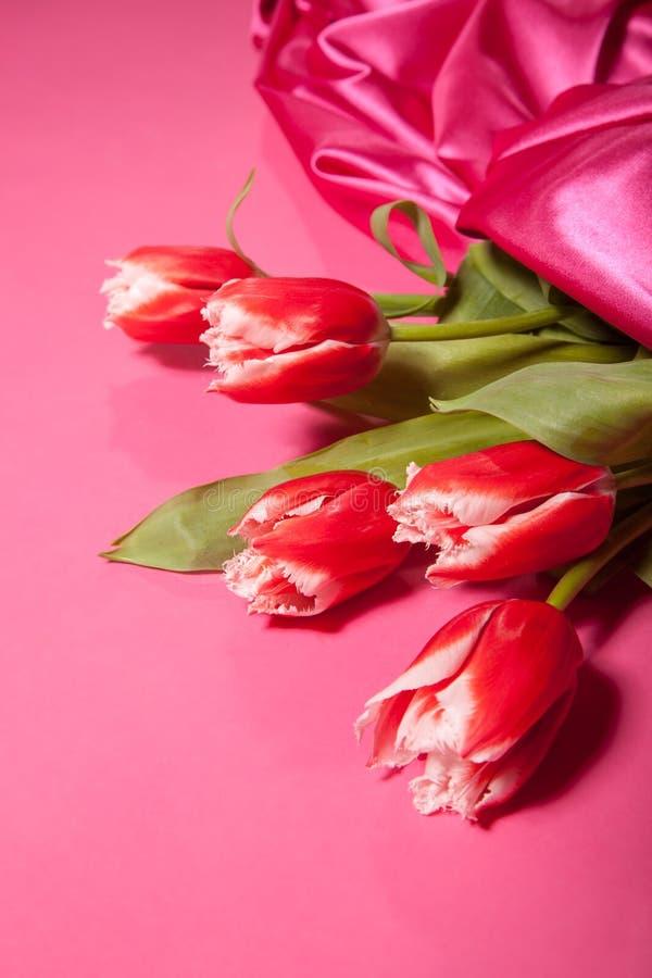 Blumenstrauß von roten Tulpen auf einem rosa Hintergrund stockfotos