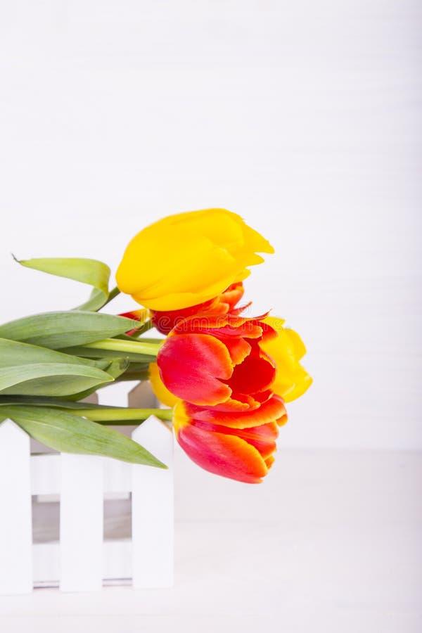 Blumenstrauß von roten und gelben Tulpen auf weißem hölzernem Hintergrund lizenzfreies stockbild
