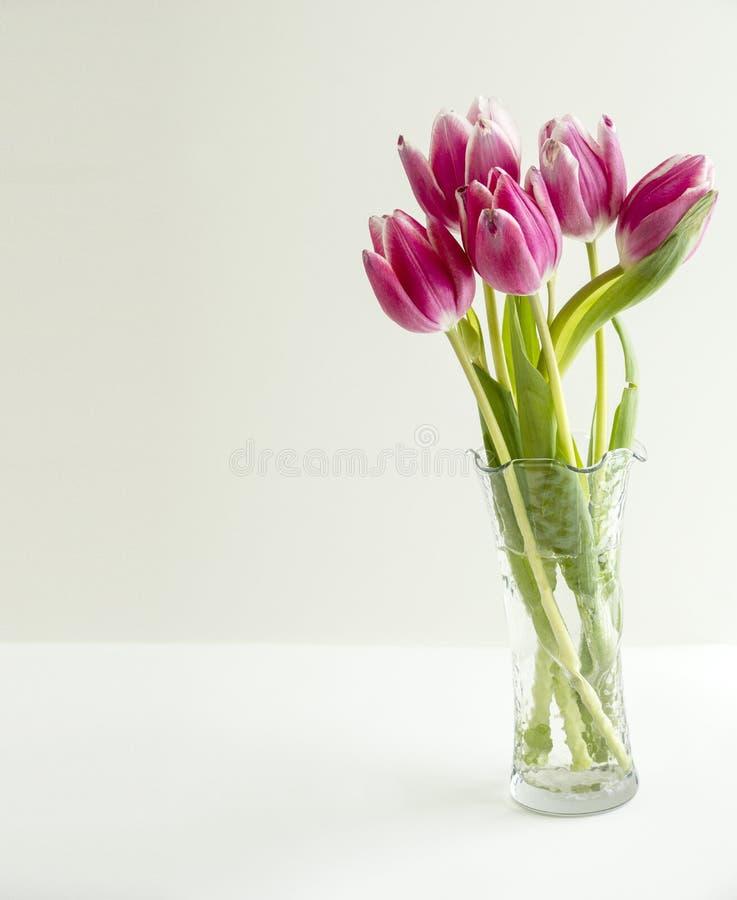 Blumenstrauß von 5 Tulpen blüht im klaren Vase auf dem links stockfotos