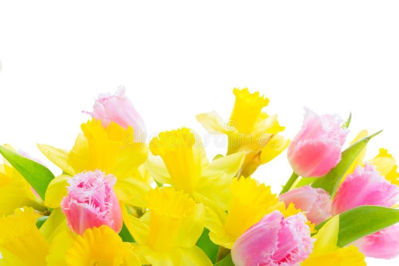 Blumenstrauß von Tulpen und von Narzissen lizenzfreie stockfotos