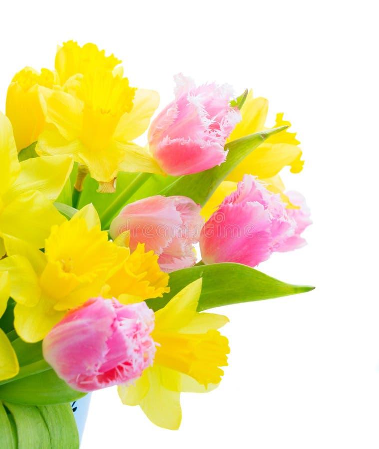 Blumenstrauß von Tulpen und von Narzissen lizenzfreie stockbilder