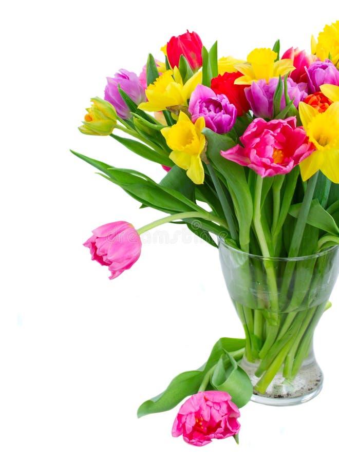 Blumenstrauß von Tulpen und von Narzissen lizenzfreies stockfoto