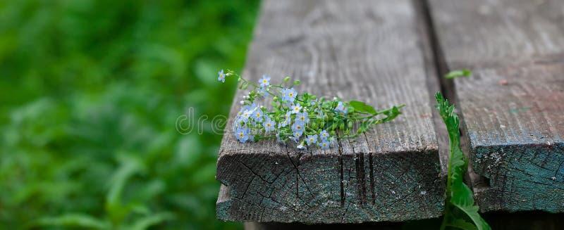 Blumenstrauß von Vergissmeinnichten auf einem alten hölzernen Hintergrund in der Natur lizenzfreie stockbilder