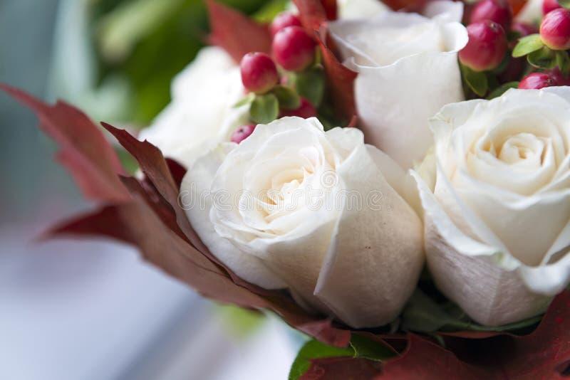 Blumenstrauß von weißen Rosen mit roten Beeren und Kastanienblättern, flo stockfotografie