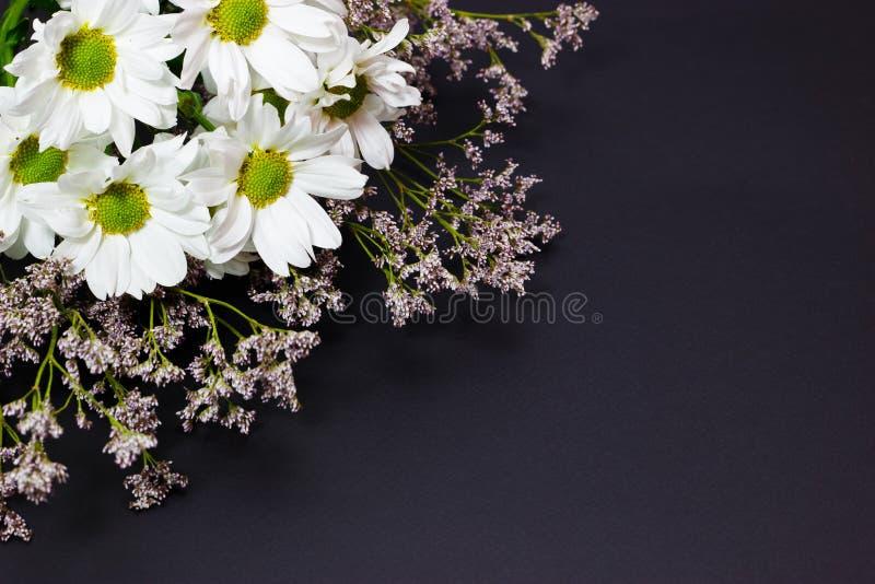 Blumenstrauß von wilden Blumen der weißen Kamille und des Limonium auf einem dunklen Hintergrund stockfotografie