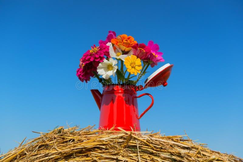 Blumenstraußblumen im Sommer stockfoto
