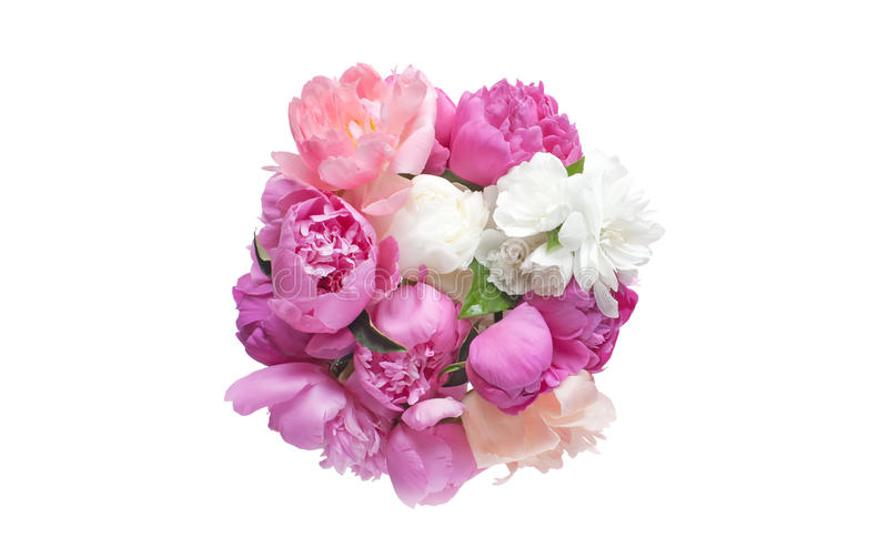 Blumenstraußpfingstrosenblumen rosa und rote Farbe lokalisiert auf weißem Hintergrund stockfotografie