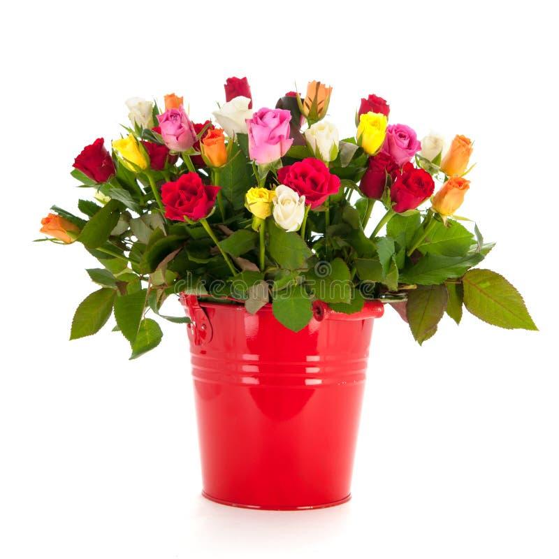 Blumenstraußrosen im Eimer lizenzfreie stockfotos