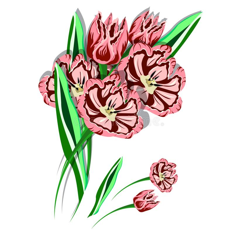 Blumenstrauß der rosafarbenen Tulpen vektor abbildung