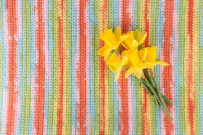 Blumenstrauß von gelben Blumen auf mehrfarbigem gestreiftem Hintergrund lizenzfreie stockbilder