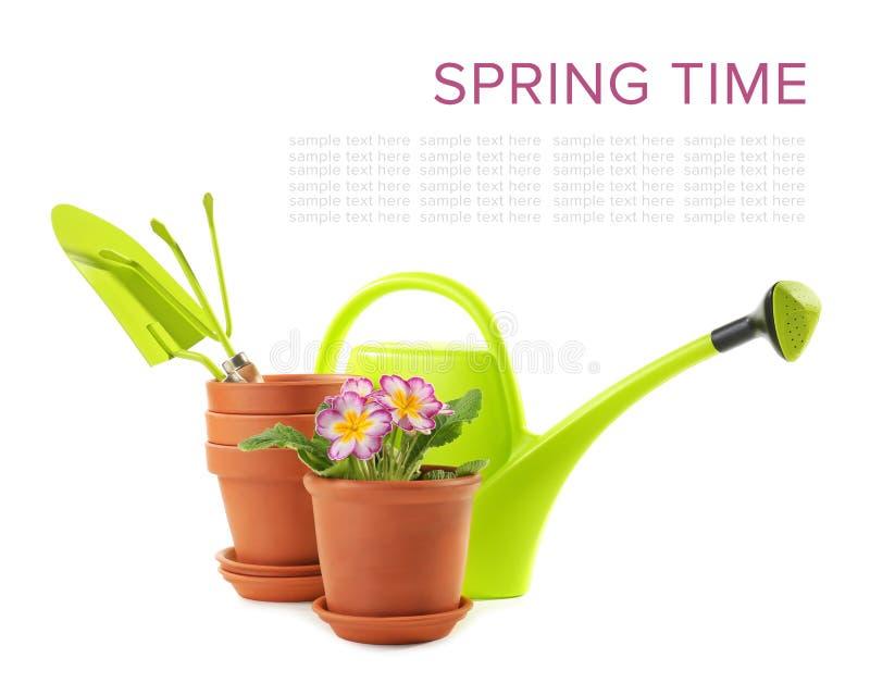 Blumentöpfe mit Anlage und Gartenarbeitausrüstung auf weißem Hintergrund lizenzfreies stockfoto