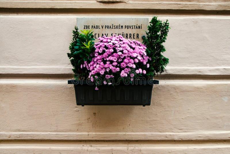 Blumentopf mit einem Kartell stockfotos