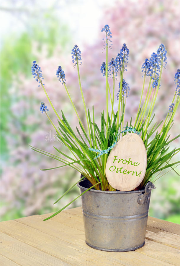 Blumentopf mit Glockenblumen stockfotografie