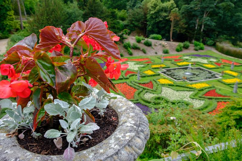 Blumentopf und -gärten bei Lyme Hall im Höchstbezirk, Cheshire, lizenzfreies stockfoto
