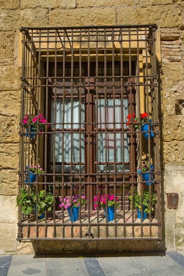 Blumentopffenster lizenzfreie stockfotografie