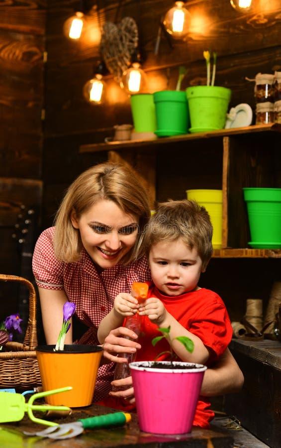 Blumentopfkonzept Kleines Jungen- und Frauenspraywasser auf Jungpflanze im Blumentopf Kind und Mutter, die herein Grünpflanze wäs lizenzfreies stockbild