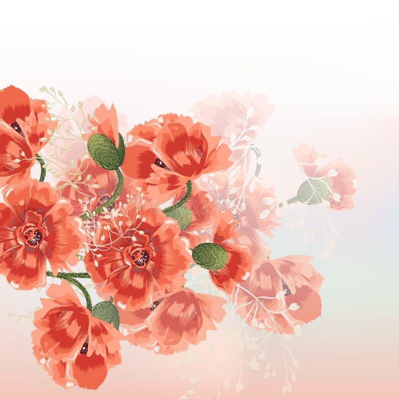 Blumenvektorhintergrund mit roter Mohnblume blüht am weichen Morgen vektor abbildung