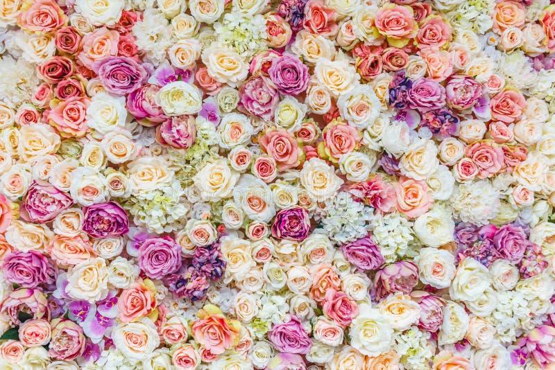 Blumenwandhintergrund mit dem Überraschen von roten und weißen Rosen, Heiratsdekoration, stockfoto