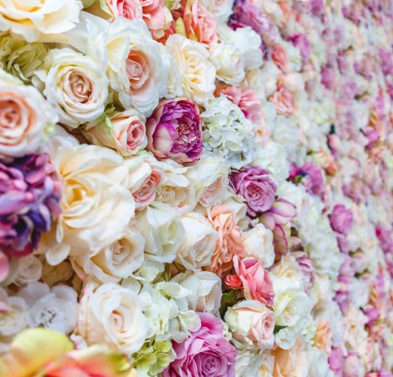 Blumenwandhintergrund mit dem Überraschen von roten und weißen Rosen, Heiratsdekoration stockfoto
