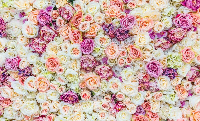 Blumenwandhintergrund mit dem Überraschen von roten und weißen Rosen, Heiratsdekoration, handgemacht lizenzfreie stockbilder
