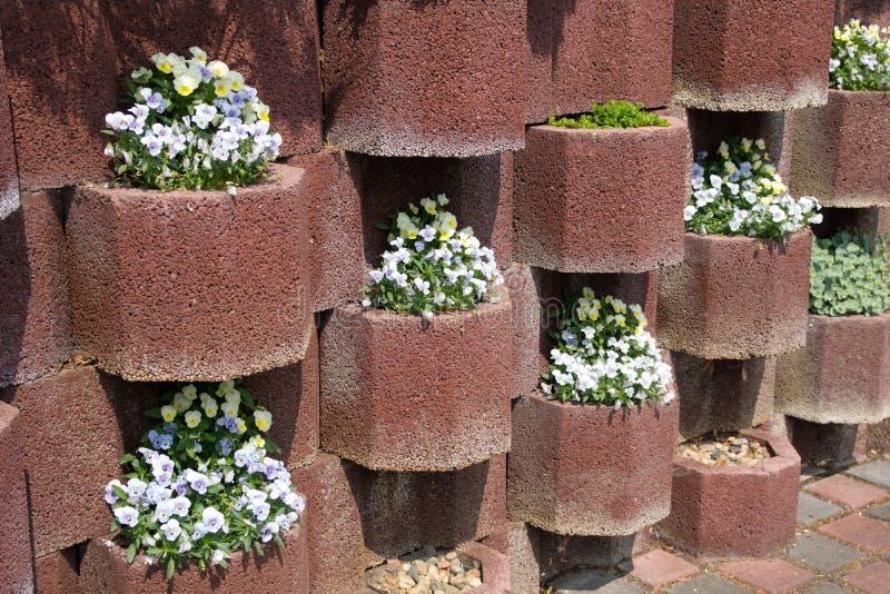 Blumenwannen stockbilder