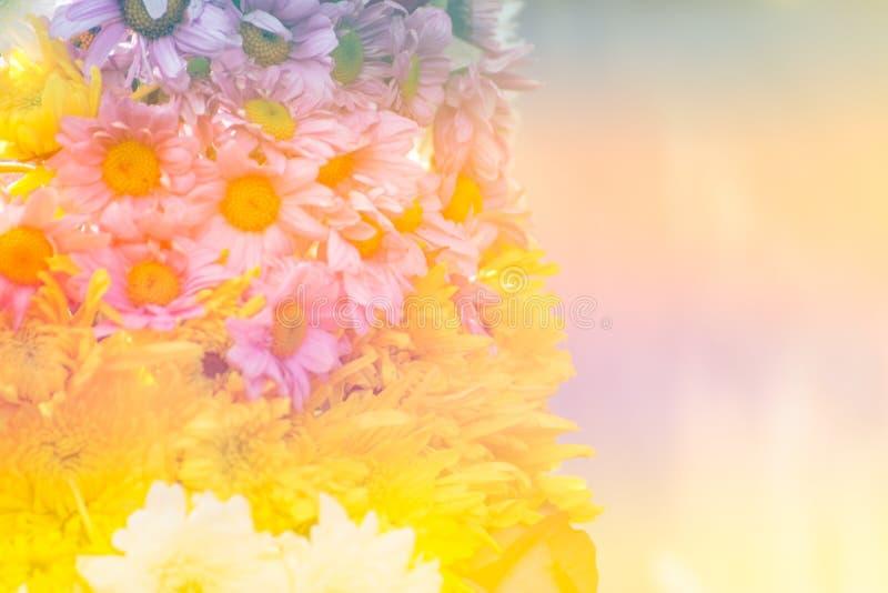 Blumenweichzeichnungshintergrund stockfoto