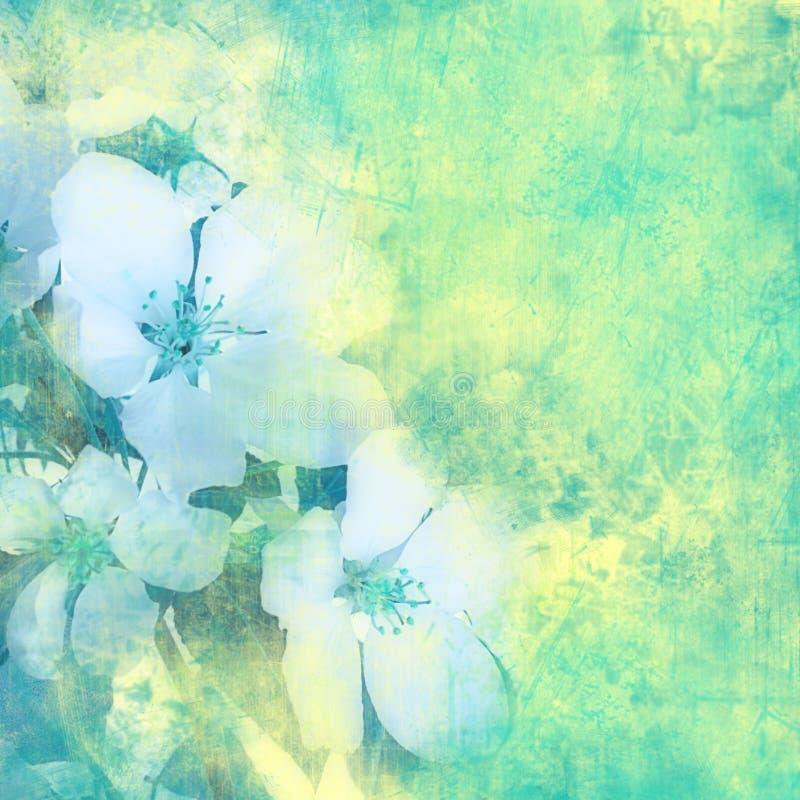 Blumenweinlesehintergrund vektor abbildung