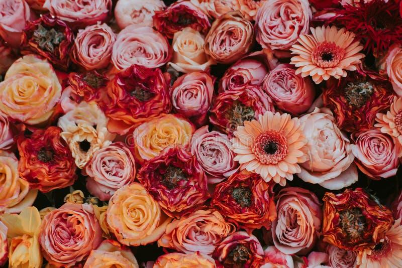 Blumenweinlesekarte mit Blumen stockfotografie