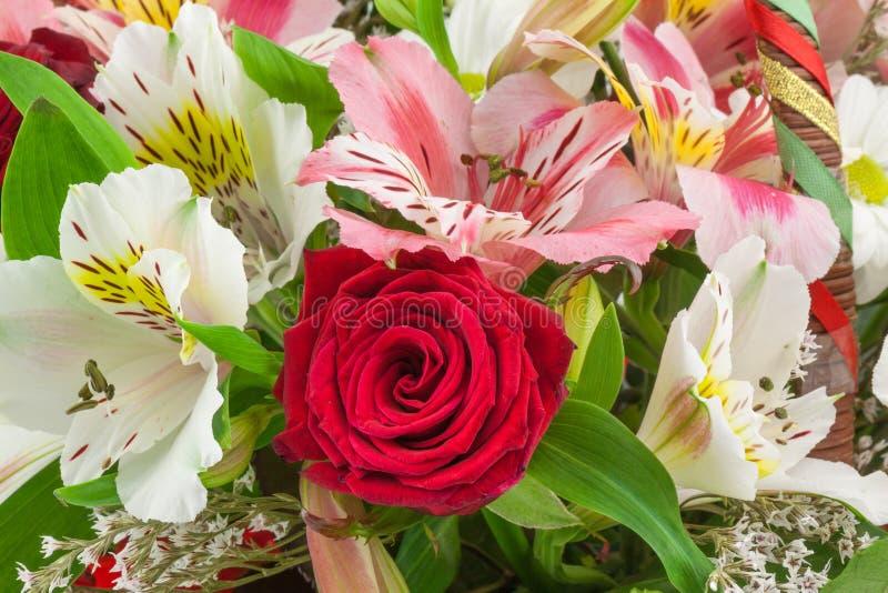 Blumenzusammensetzung stockfotos