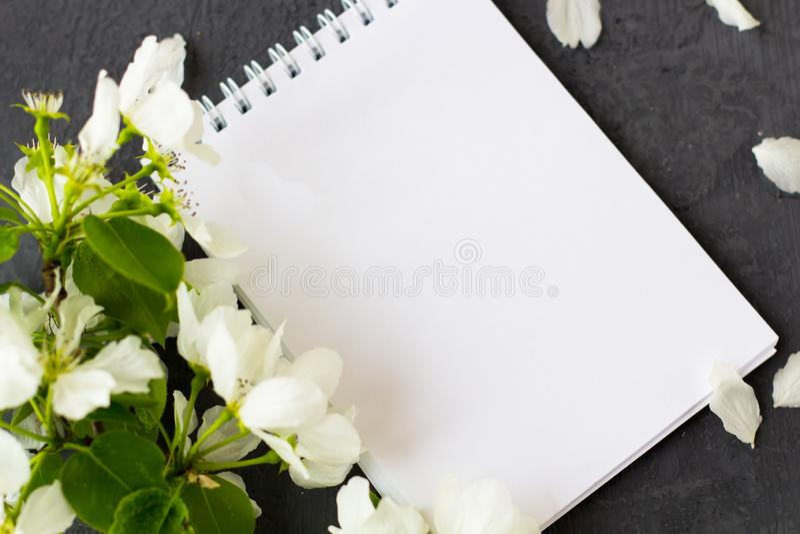 Blumenzusammensetzung an einem Frühlingstag stockfotografie