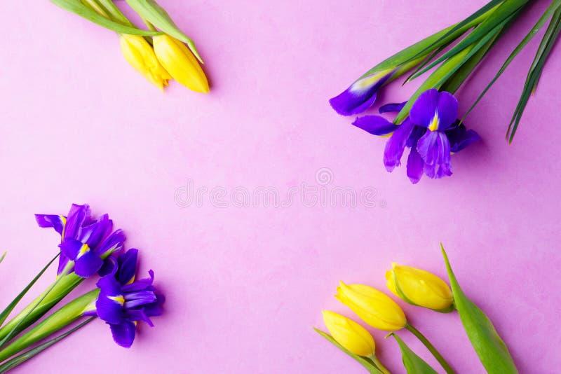 Blumenzusammensetzung, Frühlingsbegrüßende Blumenschablone lizenzfreie stockfotografie