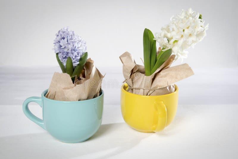 Blumenzusammensetzung mit der Flieder und weißen Hyazinthen eingewickelt im Kraftpapier im Becher Frühlingsblumen auf weißem Hint lizenzfreie stockfotografie