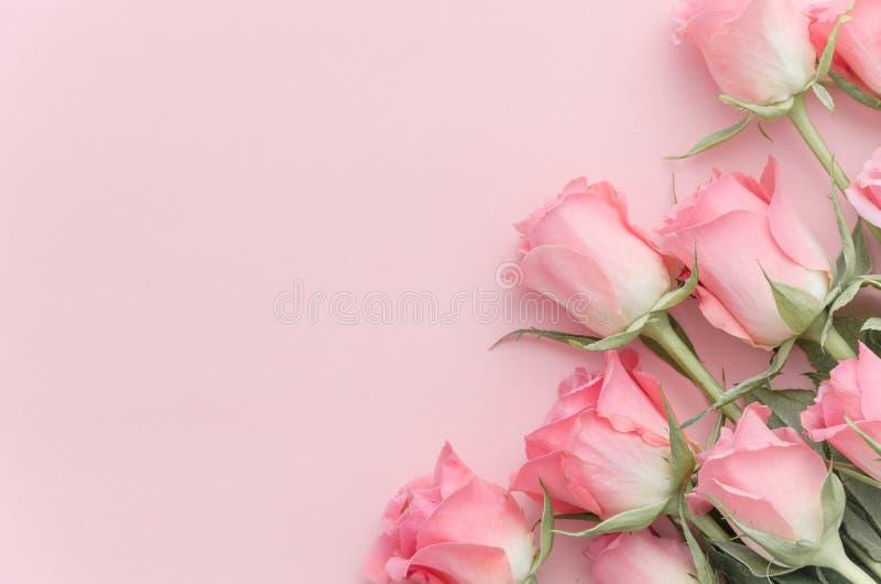 Blumenzusammensetzungsblumenstraußrosen in der Ecke auf rosa Pastellfarbhintergrund Flache Lage, Draufsicht Empfindliches schönes lizenzfreie stockbilder