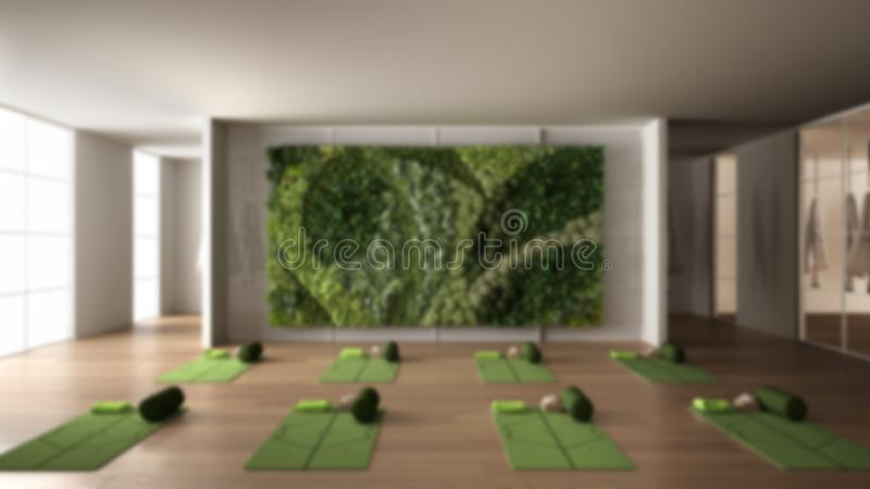 Blur background interior design: empty yoga studio, space with mat, hammock, pillows and accessories, parquet, vertical garden, royalty free stock image