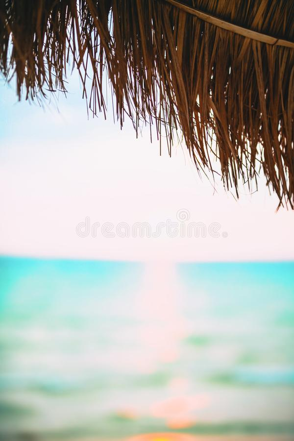 Blur beautiful nature palm leaf on tropical beach with bokeh sun light wave abstract background stock images