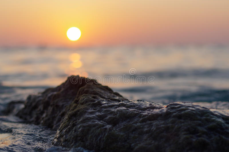 Blur colorful sunset background with shell on the rock closeup, abstract nature royalty free stock photo