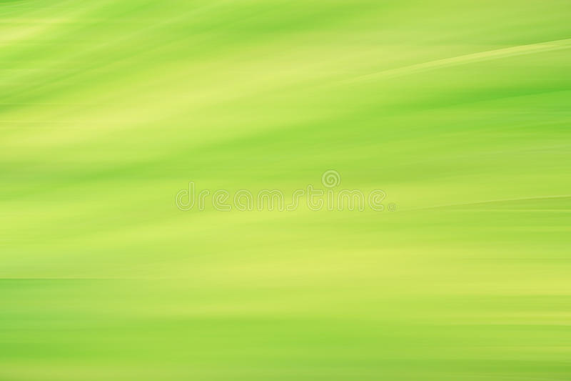 Blur fresh green spring foliage gradient stock photo