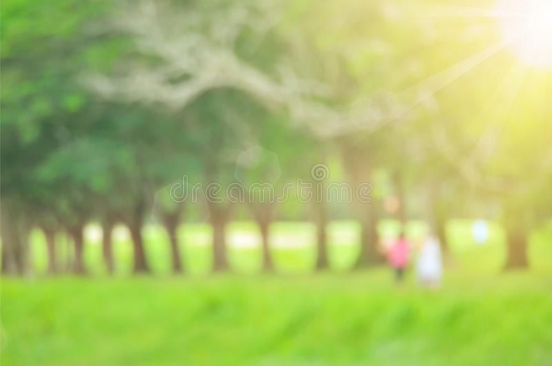 Blur green nature park abstract background. Blur people walking in green nature park abstract background stock photos