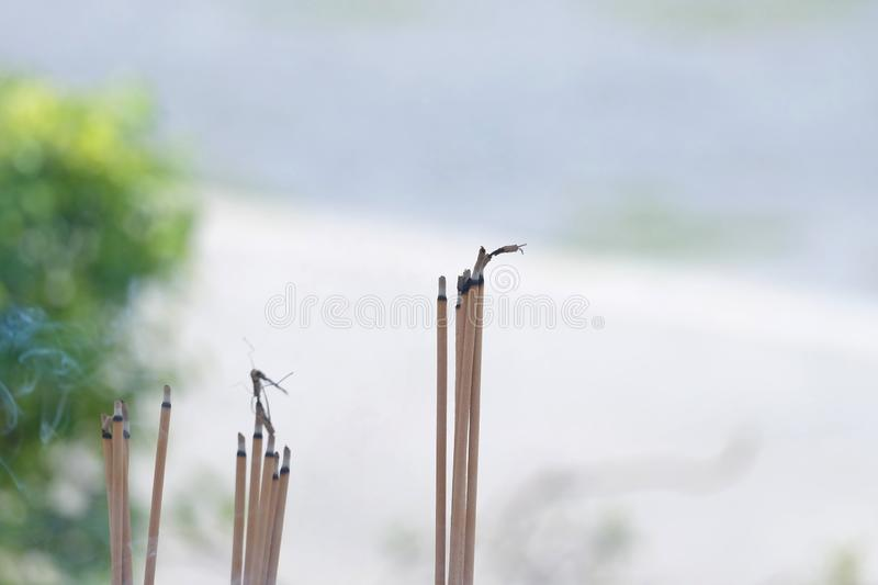 A group of joss sticks with smoke in a pot outside the Buddha temple royalty free stock image