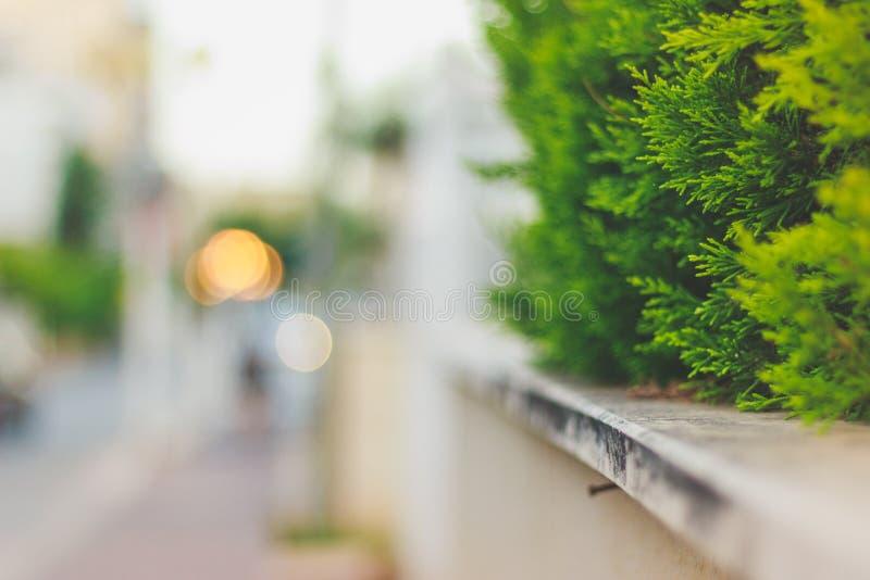 Blured bakgrund på gatan med bokeh arkivfoto
