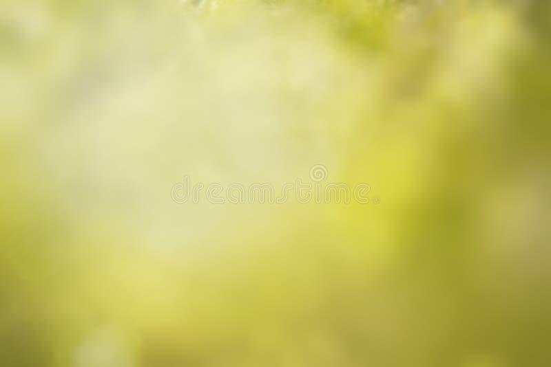 Blured groene achtergrond stock afbeelding