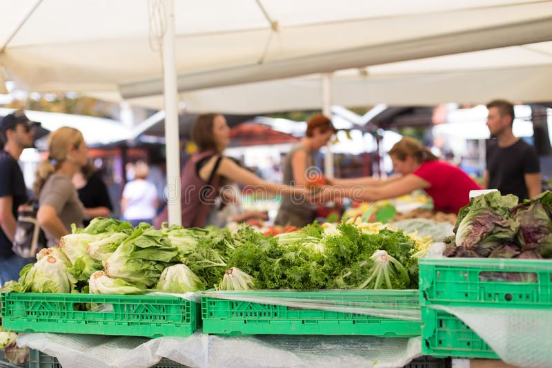 Blured unrecodnised买本地出产的菜的人在农夫的市场摊位以有机蔬菜品种  免版税库存图片