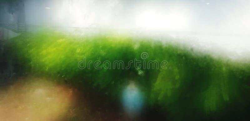 Blurgrüne Pflanzenwelt im Garten für Hintergrund stockbilder