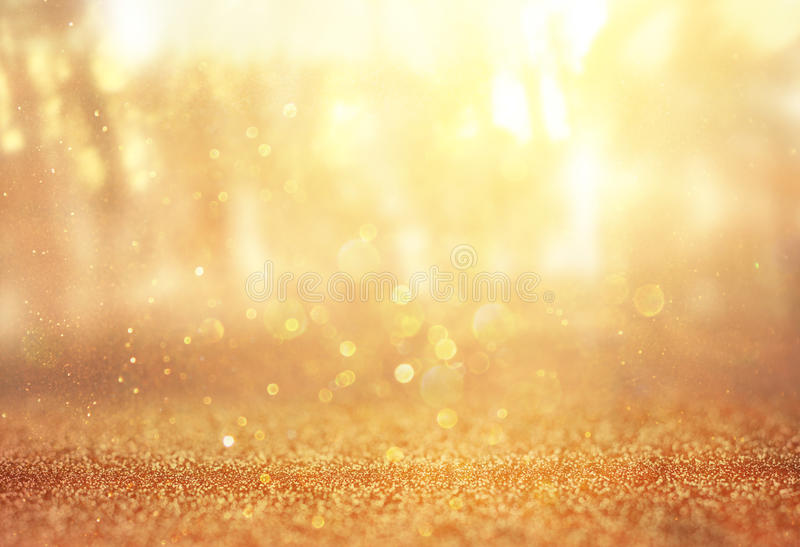 Blurred abstract photo of light burst among trees and glitter bokeh lights royalty free stock images