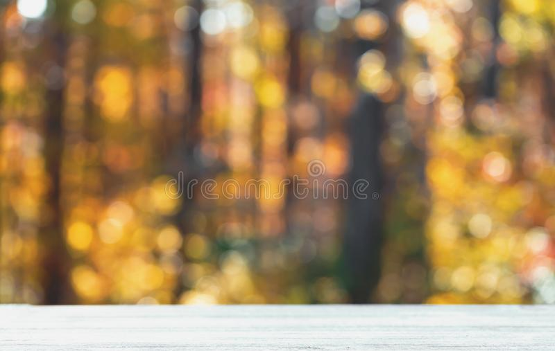 Blurred autumn forest background. With wooden table foreground stock photo