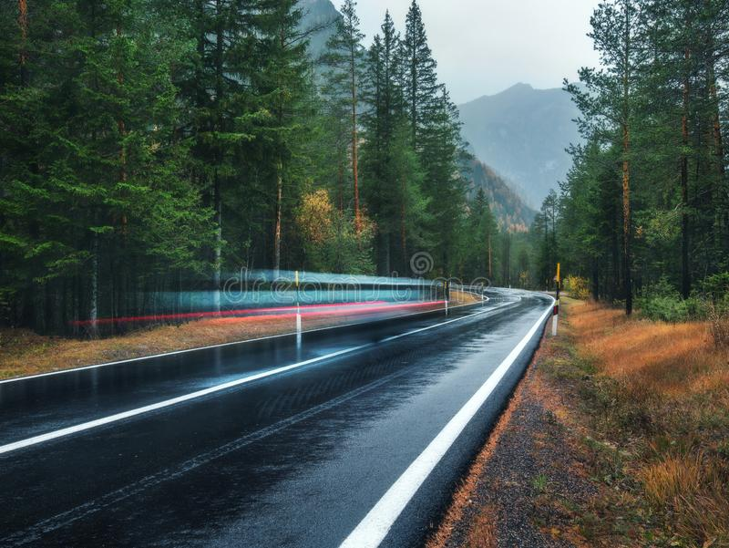 Blurred car on the road in spring forest in rain. Perfect asphalt mountain road in overcast rainy day. Roadway, pine trees in alps. Transportation. Highway in royalty free stock images