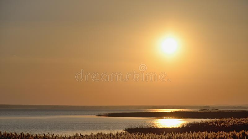 Red sun at background sky at sunset in wetland royalty free stock photo