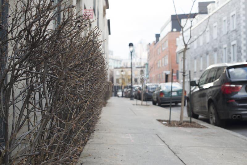 Blurred Fall street scene in the city stock photo