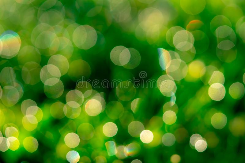Blurred fresh green grass field in the early morning. Green grass with bokeh background in spring. Nature background. Clean. Environment. Green bokeh abstract royalty free stock image
