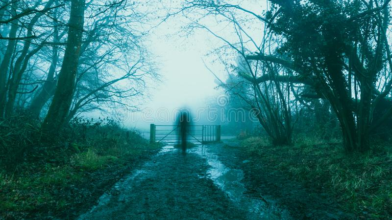 A blurred, ghostly, transparent figure, on a muddy, woodland path. On a foggy, spooky, winters day.  royalty free stock photos
